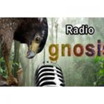 listen_radio.php?radio_station_name=32686-radio-gnosis